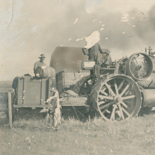 Threshing before cropped - missing head